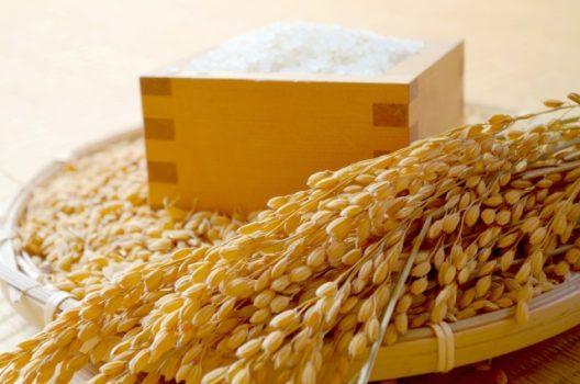 農機具のバインダー|使いかた・カンタン高額買取の秘訣まとめ